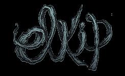 elkip dessinateur illustrateur sérigraphe nantes